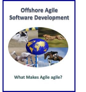 Agile 1.1